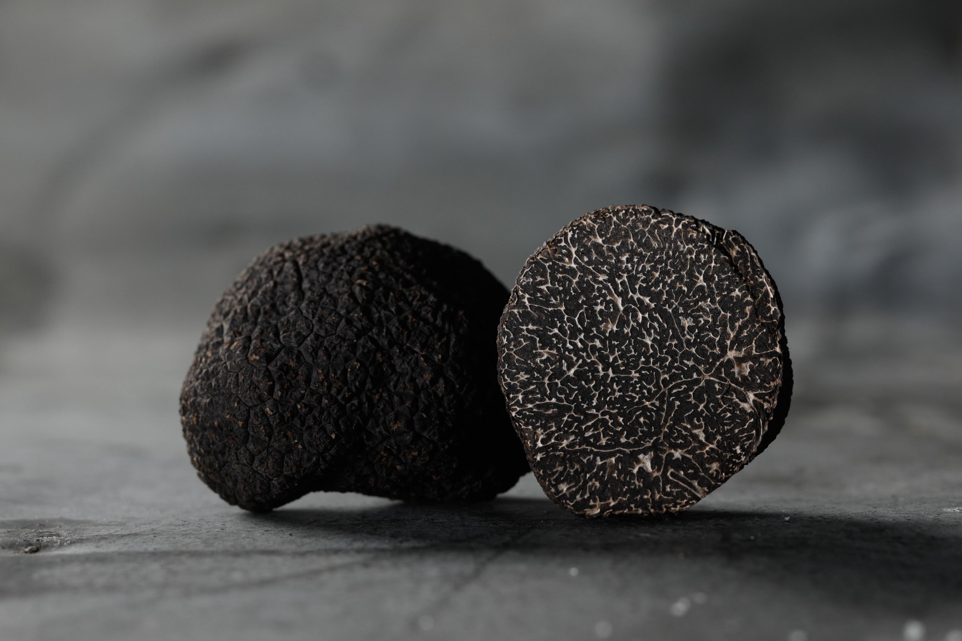 Les Foies Gras Lucien Doriath vous invitent à découvrir une sélection de truffes !